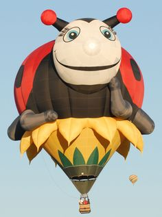 [2013 Balloon] Welcome pilot Michael Hernandez of Fort Edward, Texas!  Here is his special shape, Annie the Lady Bug:  www.balloonfiesta.com