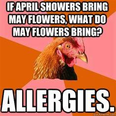 Seems legit.....  May meme.  Allergies suck