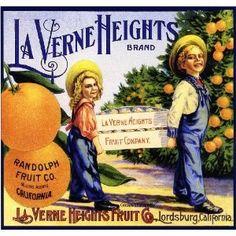 Lordsburg La Verne Heights Little Boy and Girl Orange Citrus Crate Box Label Art Print - California Citrus Fruit Crate Label Art Prints - Fruit and Vegetable Crate Label Art Prints Vintage Advertisements, Vintage Ads, Vintage Signs, Vintage Stuff, Vintage Food Labels, Orange Crate Labels, Label Art, Vegetable Crates, Old Ads