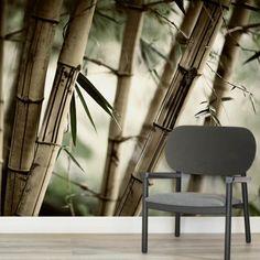 bamboo-jungle-square-wall-murals