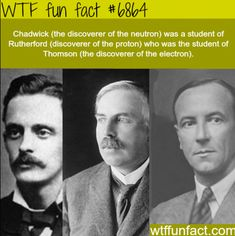 Wow Facts, Wtf Fun Facts, Funny Facts, Funny Memes, Random Facts, It's Funny, Hilarious, Random History Facts, Strange History