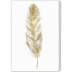 """Bungalow Rose Feather Painting Print on Canvas Size: 24"""" H x 16"""" W x 1.5"""" D"""