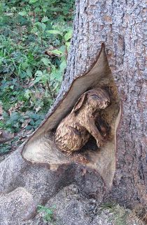Living in England: Chainsaw Art at Thornley Woods nr Newcastle