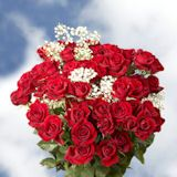 For Your Next Special Event, Order Dozen Spray Roses From Globalrose! We Carry Only The Best Dozen Spray Roses And Offers Free Delivery And Guaranteed Freshness! Dozen Roses, Buy Roses, Spray Roses, Special Events, Followers, Floral Wreath, Friends, Flower Crown, Amigos