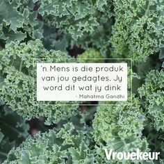 'n Mens is die produk Afrikaanse Quotes, Woman Quotes, Wise Words, Best Quotes, Qoutes, Inspirational Quotes, Groot, Lisa, Advice