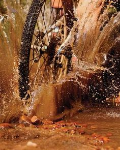 Some of the best pics of the first 10 years of the Untamed African Mountain Bike Race, the Absa Cape Epic in African Epic Source Cycling Quotes, Cycling Art, Cycling Bikes, Cycling Jerseys, Mountain Bike Races, Mountain Pics, Mtb Cycles, Bike Challenge, Pro Bike