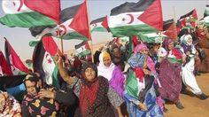 El Confidencial Saharaui: Jurista UE: acuerdo de pesca UE-Marruecos no se ap...