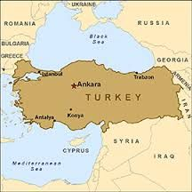 turkey - Google Search