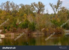 WSpinPhotos: Autumn Colored Trees Bordering a Pond in Augusta M...