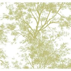 York Wallcoverings 60 sq. ft. Tree Silhouette Wallpaper-AP7504 at The Home Depot