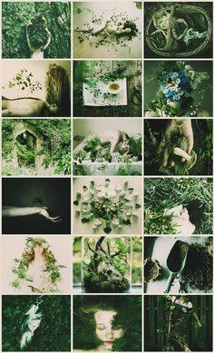 Gardener Witch aesthetic