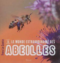 Haute Marne, Bee, Honey Bees, Bees