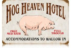 Hog Heaven Hotel - Accommodations to Wallow In - Free Mud Bath - Full Trough