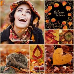 '' Autumn is here '' by Reyhan Seran Dursun