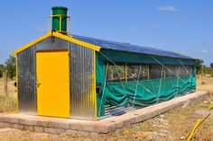 Best Value small poultry houses in Africa. Steel construction - fully equiped with everything you need to start your poultry operation! Chicken Barn, Diy Chicken Coop Plans, Chicken Cages, Chicken Coop Designs, Chicken Runs, Backyard Farming, Chickens Backyard, Low Cost House Plans, Poultry Business