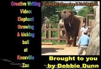 Creative writing video: Elephant throwing and kicking ball at Knoxville Zoo