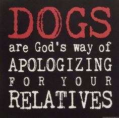 Stephanie Marrott Dogs apologizing for Relatives