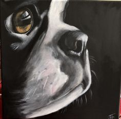 Boston Paw Print Art, Boston Bull Terrier, Boston Art, Colored Pencil Artwork, Dog Portraits, Animal Paintings, Dog Art, Dog Pictures, Painting Inspiration