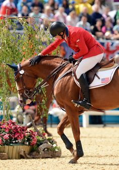 Flexible - Irish Sport Horse by Cruising