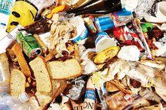 The Everything Guide to Trash - Bulk Trash Disposal -- New York Magazine