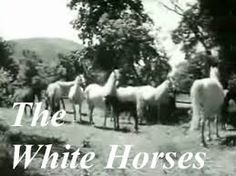 White Horses TV show. Shown on tv to fill up those rainy summer holidays. Dubbed from the German I think