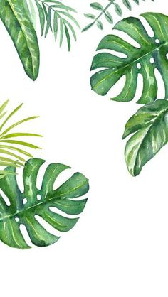 34 ideas plants wallpaper iphone print patterns for 2019 Watercolor Plants, Watercolor Leaves, Watercolor Art, Background Watercolour, Background Drawing, Watercolour Flowers, Green Watercolor, Watercolor Pattern, Green Backgrounds