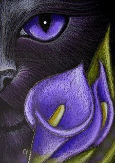fantasy pictures of cats | Art: BLACK CAT VIOLET LILY FLOWERS by Artist Cyra R. Cancel