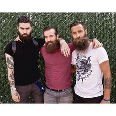 Bearded trio