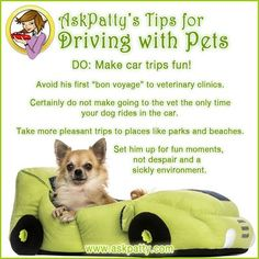 AP-Tips-for-Driving-with-Pets-4 #VictoryAutoMN http://victoryautoservice.com/