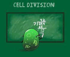 science nerd.