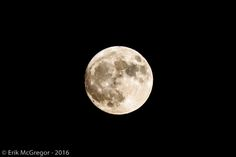 SILENT WITNESS, HAPPY PHASE - Composition Monday #PhotoOfTheDay #supermoon #moon #FullMoon #AmazingUniverse #NewYork #NightPhotography #NYC #photography #Nikon #NikonPhotography #art #ErikMcGregor #2016  © Erik McGregor - erikrivas@hotmail.com - 917-225-8963