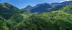 SALVADOR BENEDICTO - 3-shot panorama
