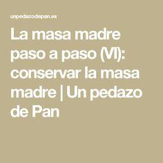 La masa madre paso a paso (VI): conservar la masa madre | Un pedazo de Pan