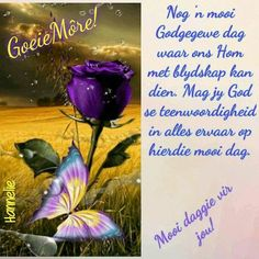Lekker Dag, Evening Greetings, Good Night Blessings, Afrikaanse Quotes, Goeie More, Christian Messages, Special Quotes, Blessed, Fancy