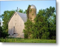 Unwanted On Reed Metal Print By Bonfire #Photography