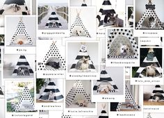 Dog Teepees by Pipolli | www.pipolli.com