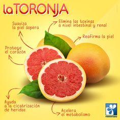 El consumo habitual de la toronja trae muchos beneficios para la salud, conoce aquí la razón y #ViveSaludable