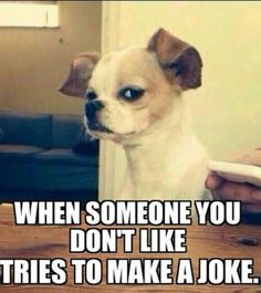 When someone you don't like tries to make a joke.