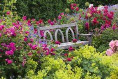 V zahradě venkovského typu si vytvořte příjemná zákoutí k odpočinku.Hodí se do ní popínavé i šípkové růže, byliny, lupiny i pelargonie, vysazené do záhonů.