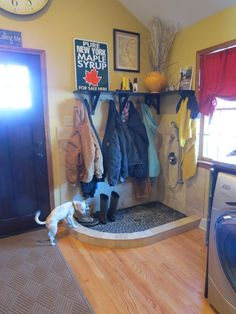 Dog and boot washing area in mud room with hooks above to hang items to dry