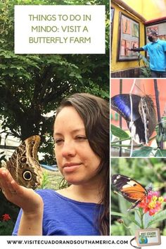 Things to do in Mindo: Visit a butterfly farm - Visit Ecuador and South America Latin America, South America, Stuff To Do, Things To Do, Inside Garden, Spanish Speaking Countries, Close Encounters, Galapagos Islands, Just Dream