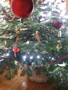 Frohe Weihnachten Christen, Christmas Bulbs, Holiday Decor, Home Decor, Trees, Xmas, Homemade Home Decor, Christmas Light Bulbs, Decoration Home