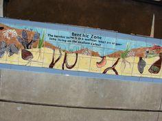 Matthys Elementary.  Bench top. Ocean Zone. Benthic Zone.  Artist Boat Eco-Art Residency Program