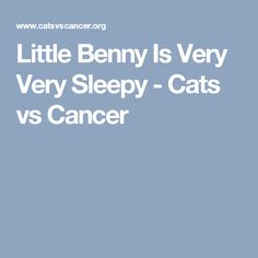 Little Benny Is Very Very Sleepy - Cats vs Cancer