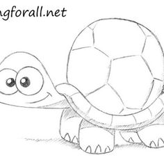 hawaiian happy face spider coloring pages   51 Best Cartoon turtle images in 2019   Learn drawing ...