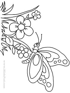 Cute Butterfly Coloring Pages Butterfly Line Drawing, Cartoon Butterfly, Flower Line Drawings, Butterfly Coloring Page, Cartoon Flowers, Cute Butterfly, Coloring Book Pages, Coloring Pages For Kids, Flower Coloring Sheets