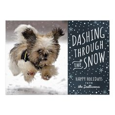 Dashing Through the Snow Holiday Pet Card with photo