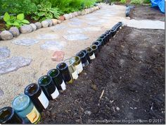 Looking for unique garden edging? Put your empty wine bottles to good use! via The Casual Gardener - Well this would be easy to gather supplies for at least!!