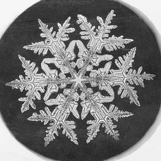 A single snowflake photographed by Wilson A. Bentley in the late 1800's. #photography #snowflake