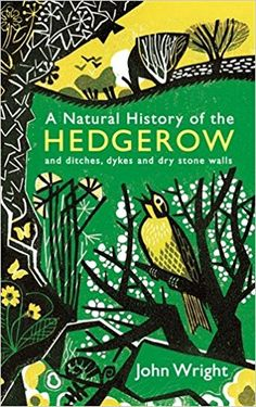 A Natural History of the Hedgerow: and ditches, dykes and dry stone walls: Amazon.co.uk: John Wright: 9781846685521: Books